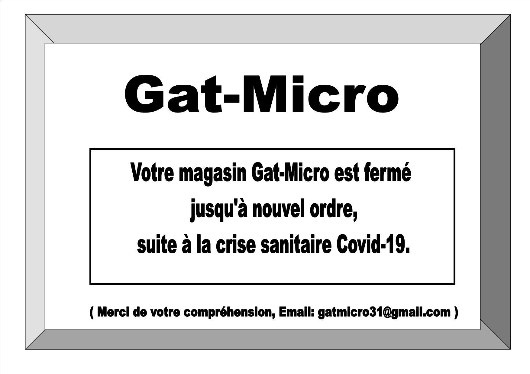 email: gatmicro31@gmail.com